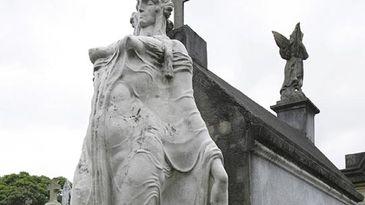 Musa cemiterio araça