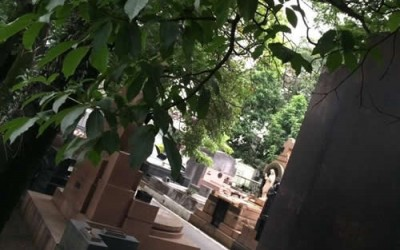 cemiterio araça