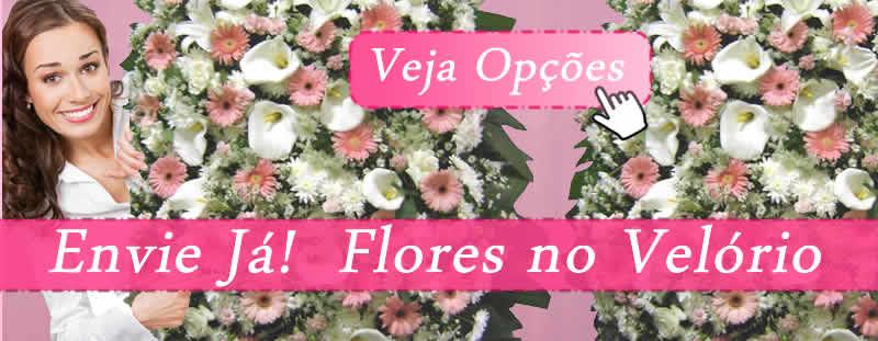 Floricultura Velório